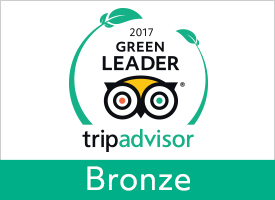 GreenLeader Bronze